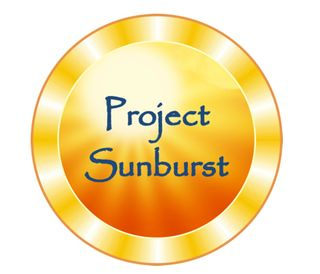 *Project Sunburst