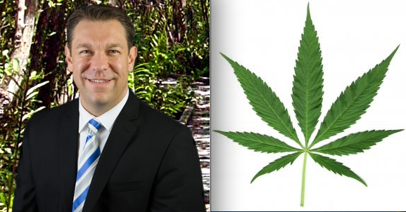 Trey Radel, Medical Marijuana