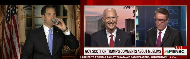 Florida's GOP  %22Brain Trust%22