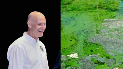 Rick Scott, Algae Bloom